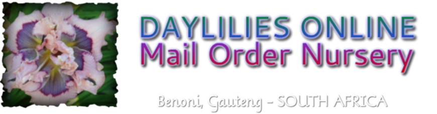 DAYLILIES ONLINE MAIL ORDER NURSERY BENONI, GAUTENG, SOUTH AFRICA ORDERS OPEN: SEP - APR